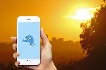 Heat tweet! Users flock to Twitter when temperatures rise