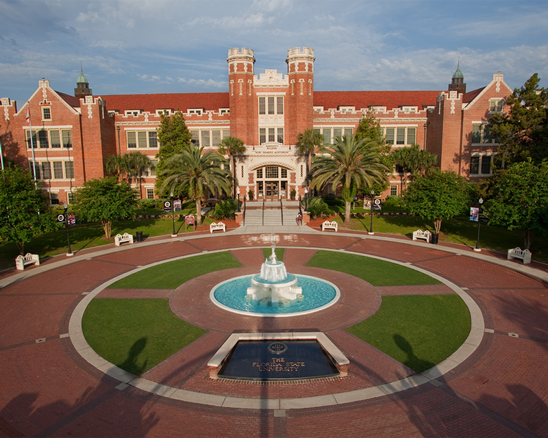 florida state university doctoral thesis The department congratulates luke arredondo, ryan donovan, thomas greene, meredith ross, sheldon steen, and daniel wells on their nominations for florida state university's 2017-2018 outstanding teaching assistant award.